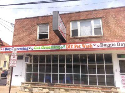 Avery's Pet Styling Salon