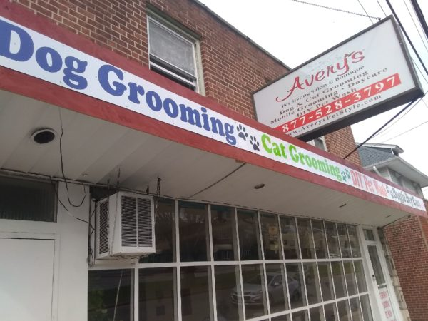 Avery's Pet Styling Salon Upper Darby, PA