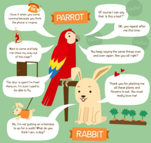If Animals Could Talk Graphic